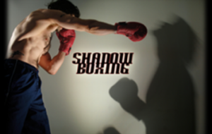 L'IMPORTANCE DU SHADOW BOXING EN FULL-CONTACT